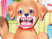 خلع اسنان الجرو
